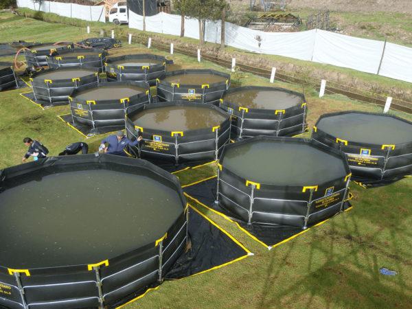 Tanques y Diques en Geomembrana (armado rápido)